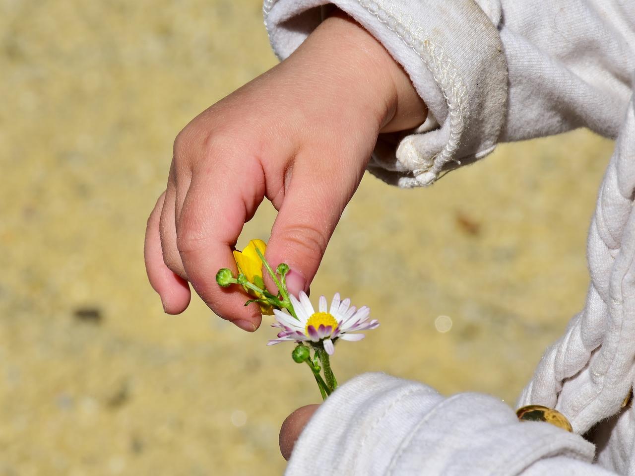 child, girl, hand