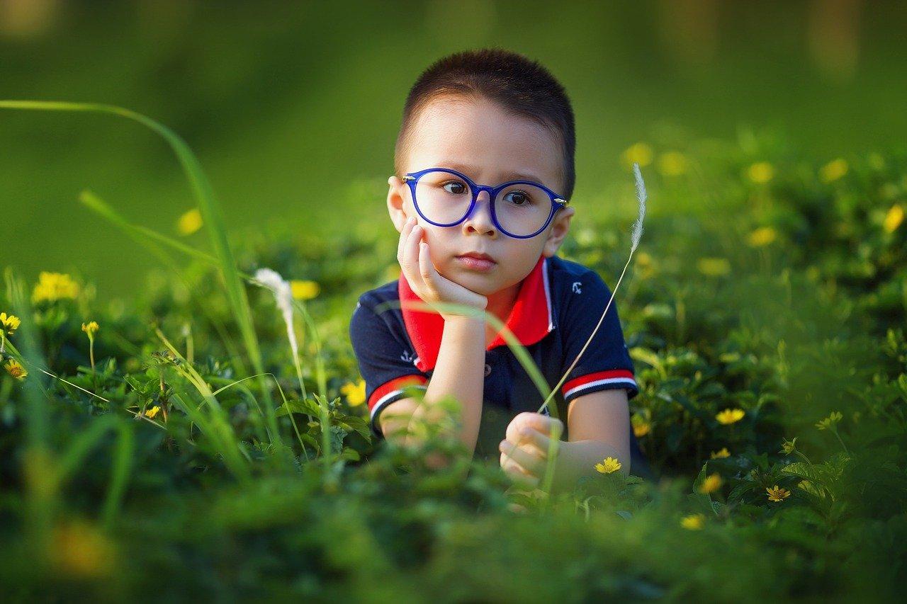 kid, boy, field